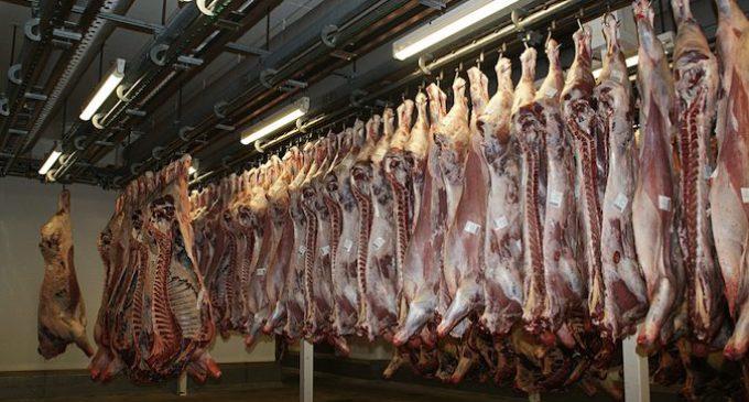 carne-cambio-climatico-680x365